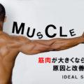 筋トレをしても筋肉が大きくならない原因と大きくする5つの方法